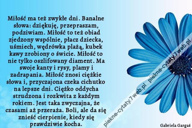 Piękne Cytaty Miłość Ma Też Zwykłe Dni Banalne Słowa